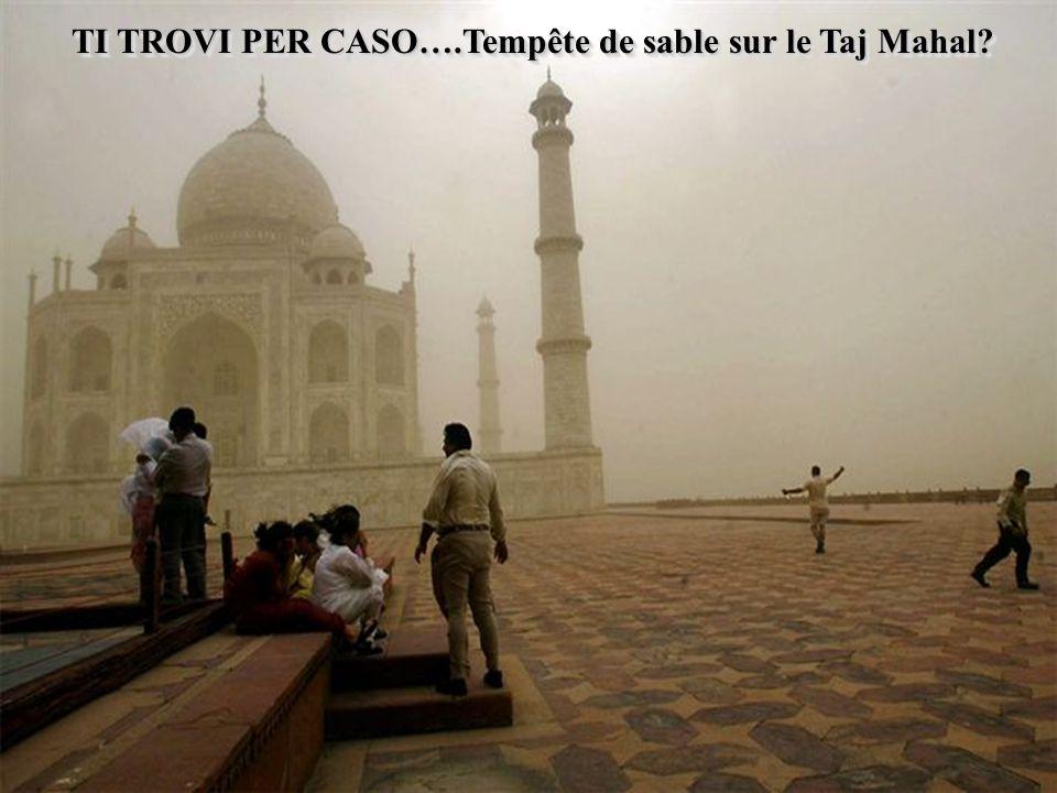 TI TROVI PER CASO….Tempête de sable sur le Taj Mahal?