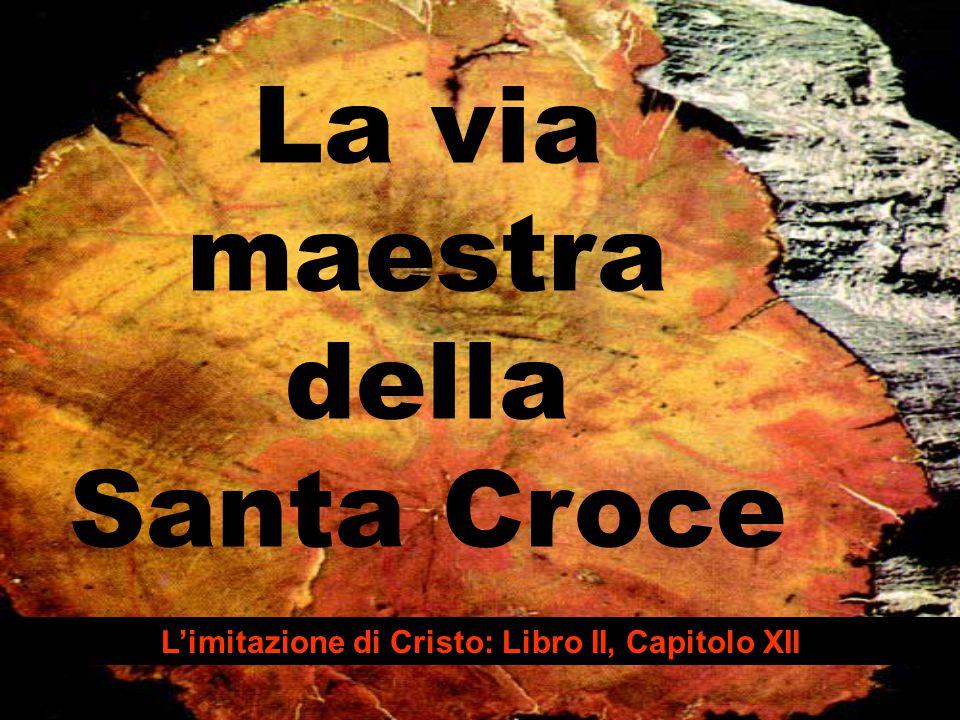La via maestra della Santa Croce L'imitazione di Cristo: Libro II, Capitolo XII