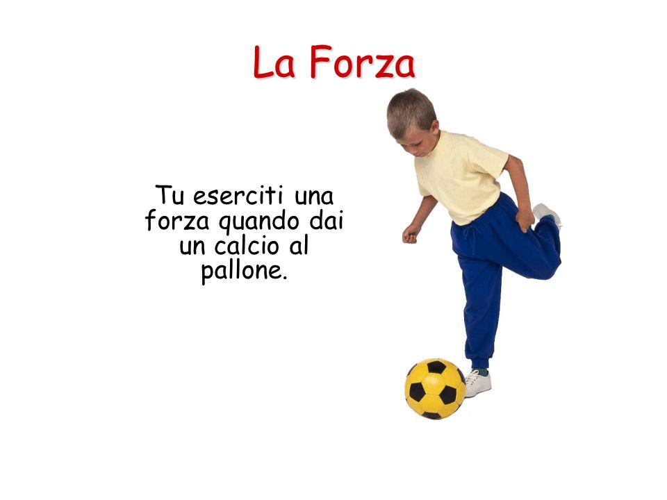 Tu eserciti una forza quando dai un calcio al pallone. La Forza