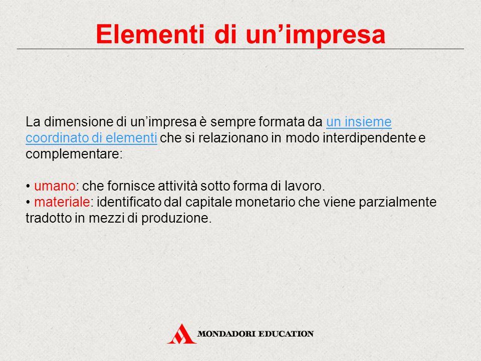 Elementi di un'impresa La dimensione di un'impresa è sempre formata da un insieme coordinato di elementi che si relazionano in modo interdipendente e