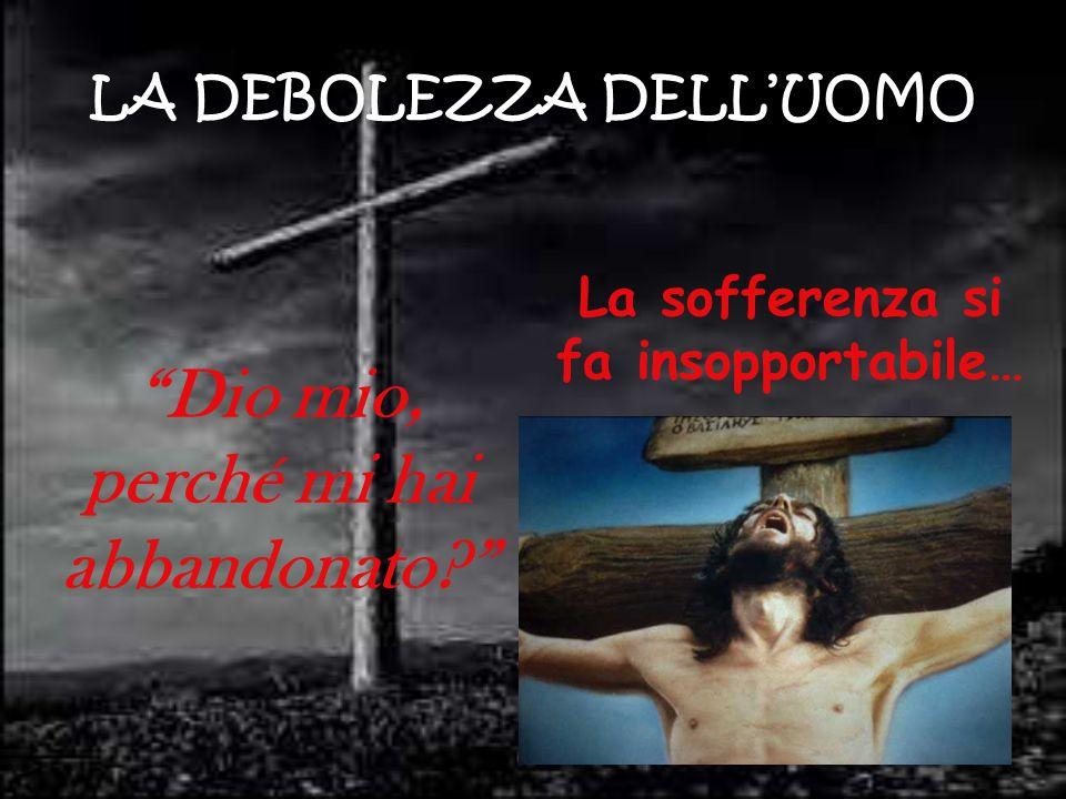 """LA DEBOLEZZA DELL'UOMO La sofferenza si fa insopportabile… """"Dio mio, perché mi hai abbandonato?"""""""