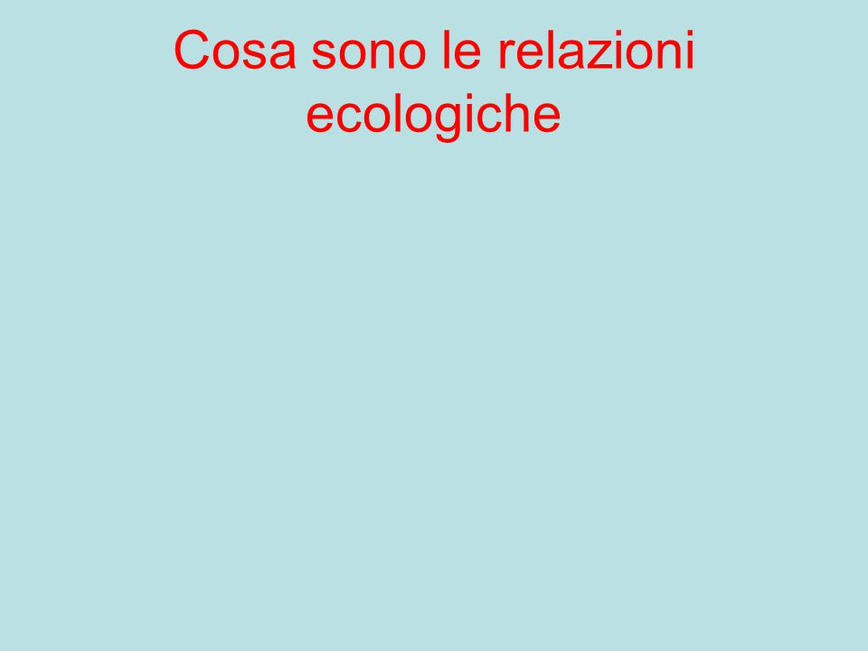 Cosa sono le relazioni ecologiche