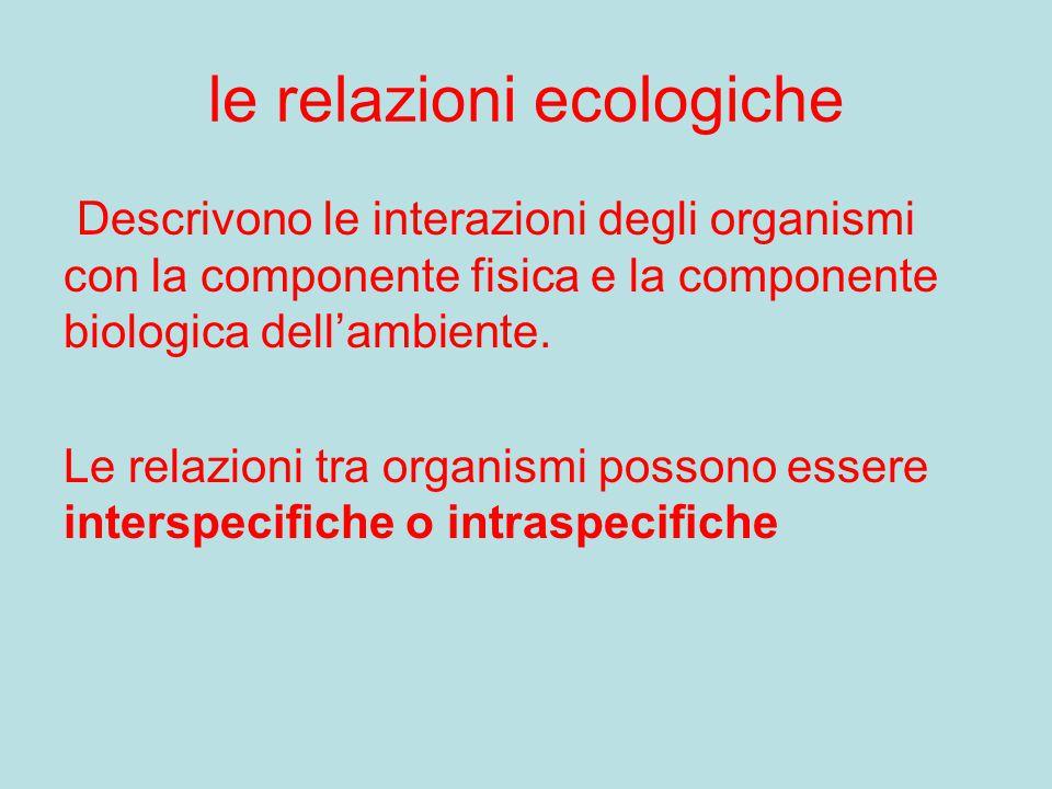 le relazioni ecologiche Descrivono le interazioni degli organismi con la componente fisica e la componente biologica dell'ambiente. Le relazioni tra o