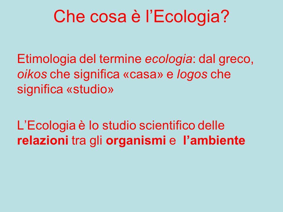 Che cosa è l'Ecologia? Etimologia del termine ecologia: dal greco, oikos che significa «casa» e logos che significa «studio» L'Ecologia è lo studio sc