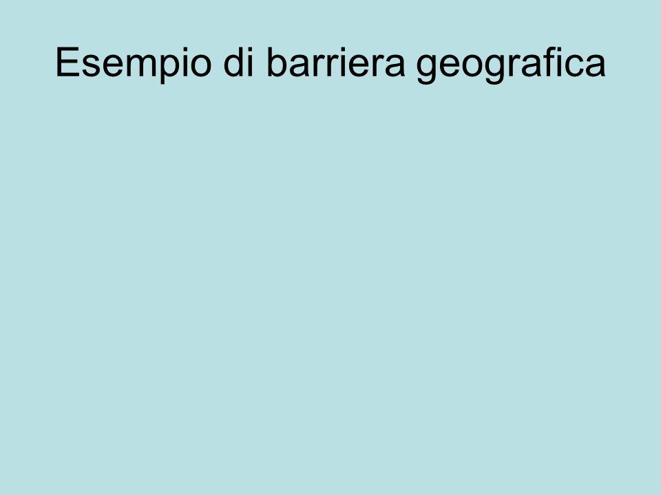 Esempio di barriera geografica