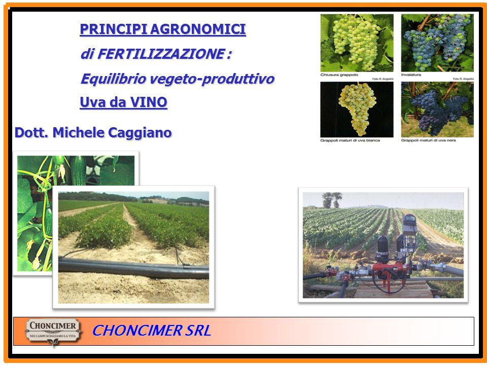 ITALIA CHONCIMER SRL PRINCIPI AGRONOMICI di FERTILIZZAZIONE : Equilibrio vegeto-produttivo Uva da VINO Dott. Michele Caggiano