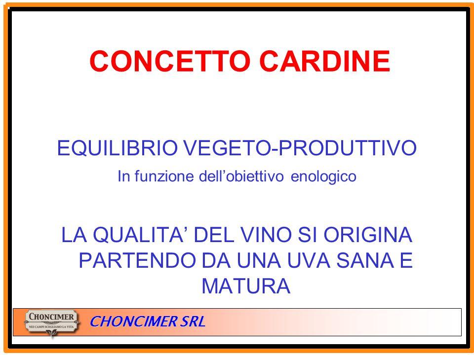 ITALIA CHONCIMER SRL EQUILIBRIO VEGETO-PRODUTTIVO In funzione dell'obiettivo enologico LA QUALITA' DEL VINO SI ORIGINA PARTENDO DA UNA UVA SANA E MATU
