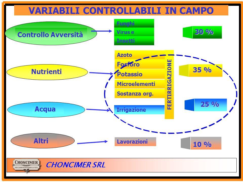 ITALIA CHONCIMER SRL VARIABILI CONTROLLABILI IN CAMPO Controllo Avversità Funghi Virus e Batteri Insetti 30 % Acqua Irrigazione 25 % Altri 10 % Lavora