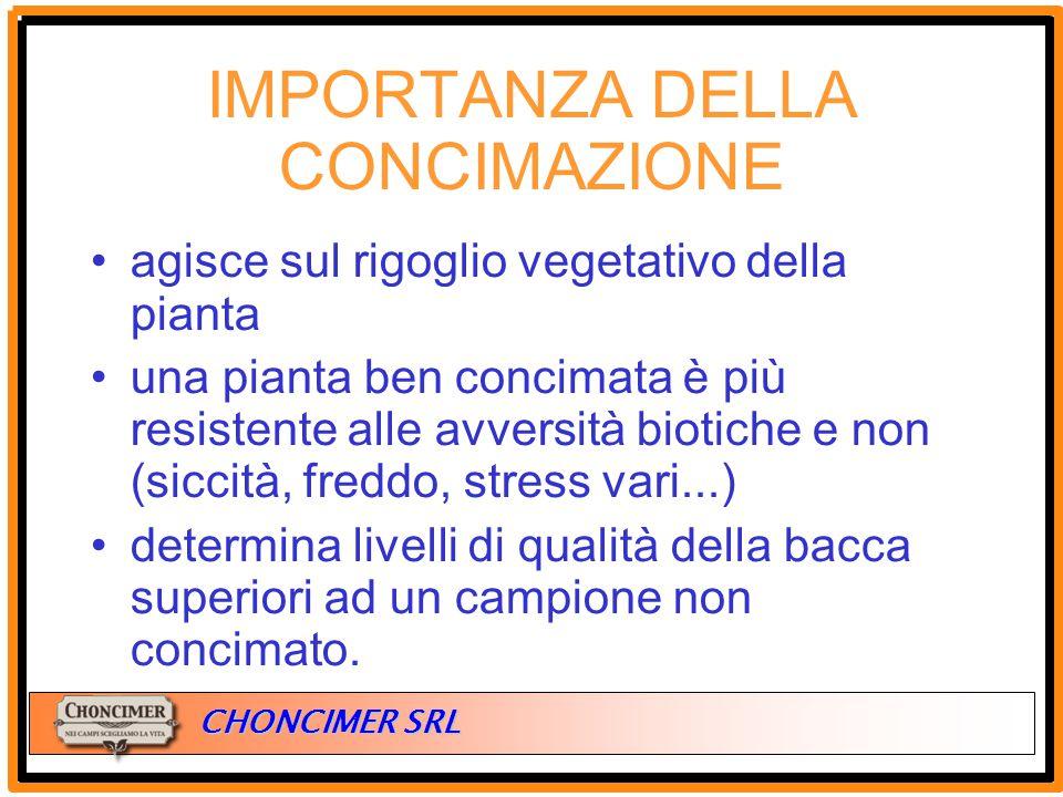 ITALIA CHONCIMER SRL agisce sul rigoglio vegetativo della pianta una pianta ben concimata è più resistente alle avversità biotiche e non (siccità, fre