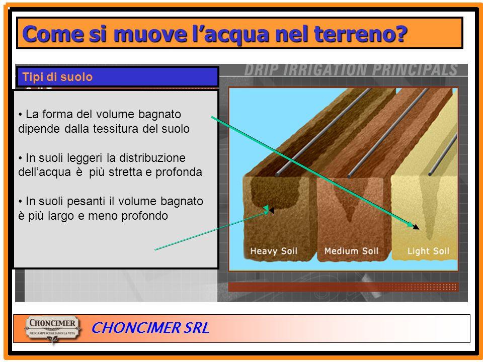 ITALIA CHONCIMER SRL Tipi di suolo La forma del volume bagnato dipende dalla tessitura del suolo In suoli leggeri la distribuzione dell'acqua è più st