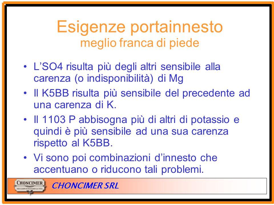 ITALIA CHONCIMER SRL L'SO4 risulta più degli altri sensibile alla carenza (o indisponibilità) di Mg Il K5BB risulta più sensibile del precedente ad un