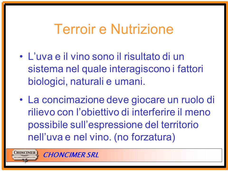 ITALIA CHONCIMER SRL Terroir e Nutrizione L'uva e il vino sono il risultato di un sistema nel quale interagiscono i fattori biologici, naturali e uman