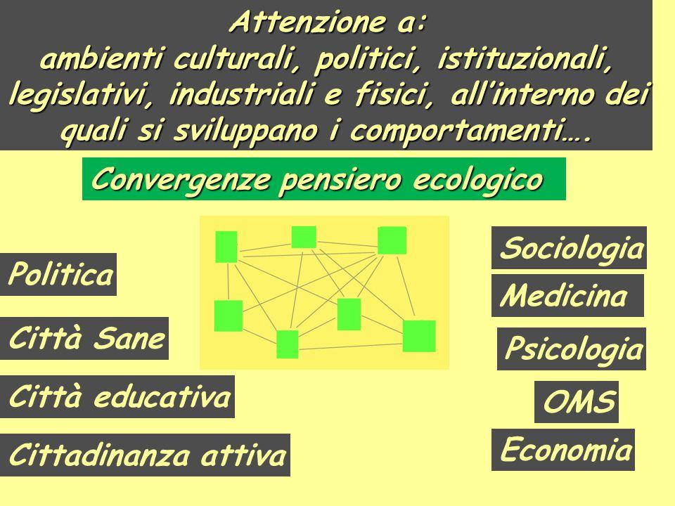 Attenzione a: ambienti culturali, politici, istituzionali, legislativi, industriali e fisici, all'interno dei quali si sviluppano i comportamenti….