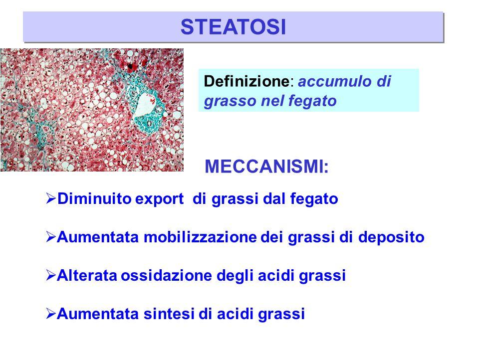 STEATOSI: classificazione Si può osservare in molte epatopatie e si può distinguere istologicamente come:  MACROVESCICOLARE (a grosse bolle)  MICROVESCICOLARE (a piccole bolle)  MISTA (a grosse e piccole bolle) Brunt, Modern Pathology 20: S40, 2007