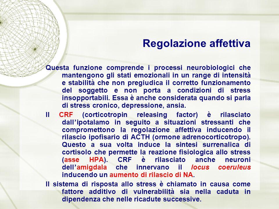Regolazione affettiva Questa funzione comprende i processi neurobiologici che mantengono gli stati emozionali in un range di intensità e stabilità che