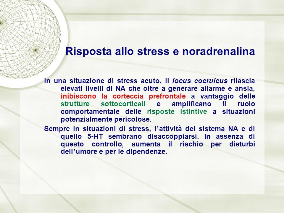 Risposta allo stress e noradrenalina In una situazione di stress acuto, il locus coeruleus rilascia elevati livelli di NA che oltre a generare allarme