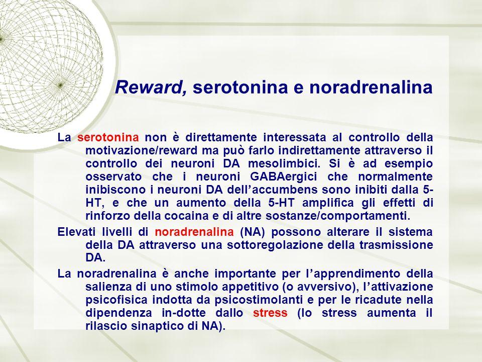 Reward, serotonina e noradrenalina La serotonina non è direttamente interessata al controllo della motivazione/reward ma può farlo indirettamente attr