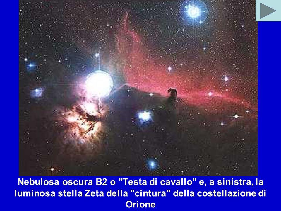 Nebulosa oscura B2 o Testa di cavallo e, a sinistra, la luminosa stella Zeta della cintura della costellazione di Orione