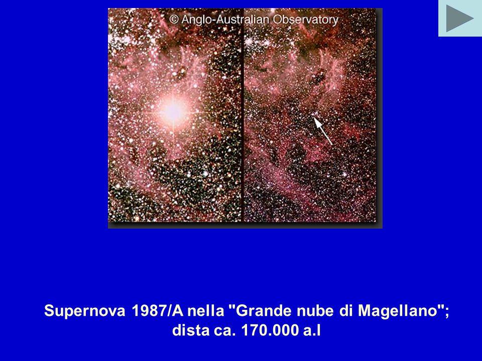 Supernova 1987/A nella Grande nube di Magellano ; dista ca. 170.000 a.l