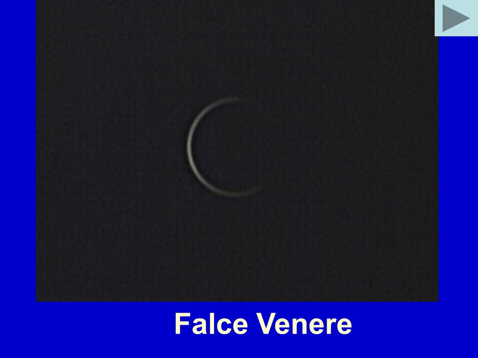 Falce Venere