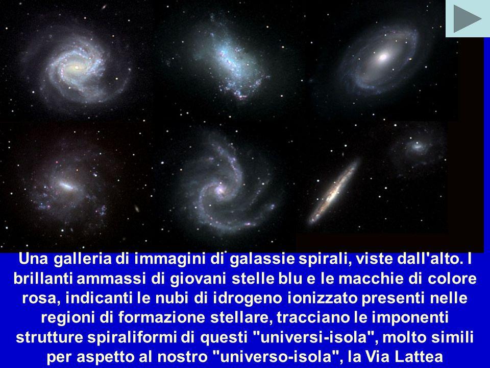 Una galleria di immagini di galassie spirali, viste dall alto.