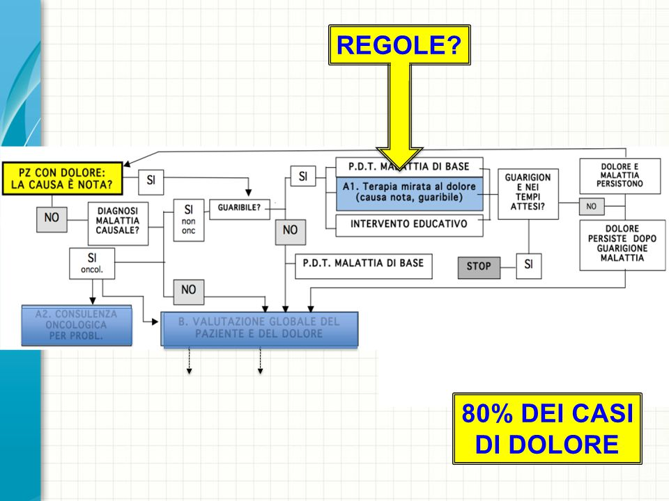 80% DEI CASI DI DOLORE REGOLE