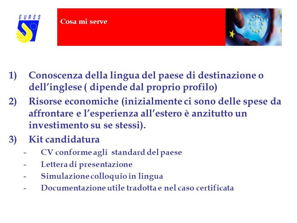 Cosa mi serve 1)Conoscenza della lingua del paese di destinazione o dell'inglese ( dipende dal proprio profilo) 2)Risorse economiche (inizialmente ci