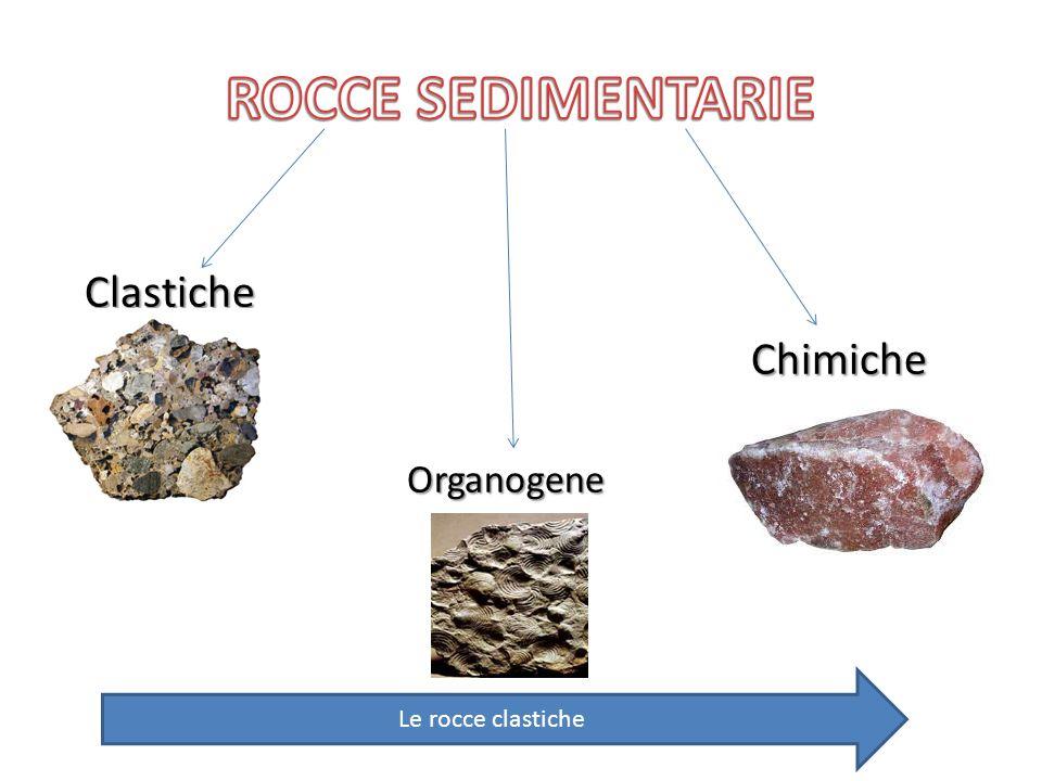 Clastiche Clastiche Chimiche Chimiche Organogene Le rocce clastiche