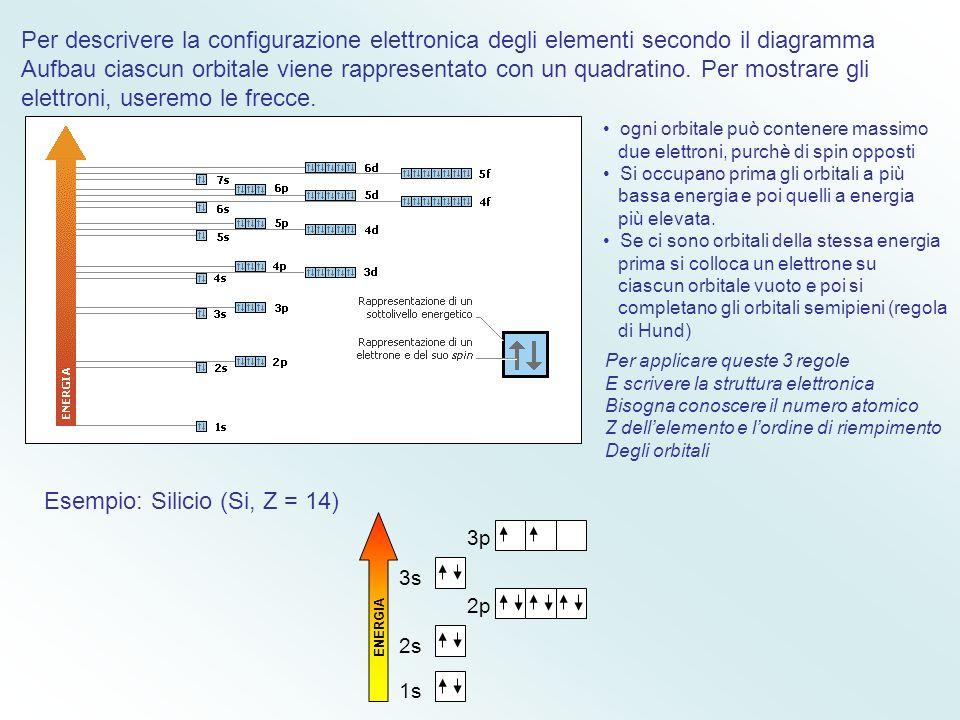 L'importanza dello spin dell'elettrone nella determinazione della configurazione Elettronica dell'atomo fu chiarita dal fisico Wolfgang Pauli, che enu