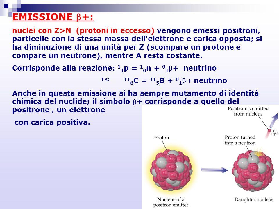 EMISSIONE +: nuclei con Z>N (protoni in eccesso) vengono emessi positroni, particelle con la stessa massa dell'elettrone e carica opposta; si ha dimi