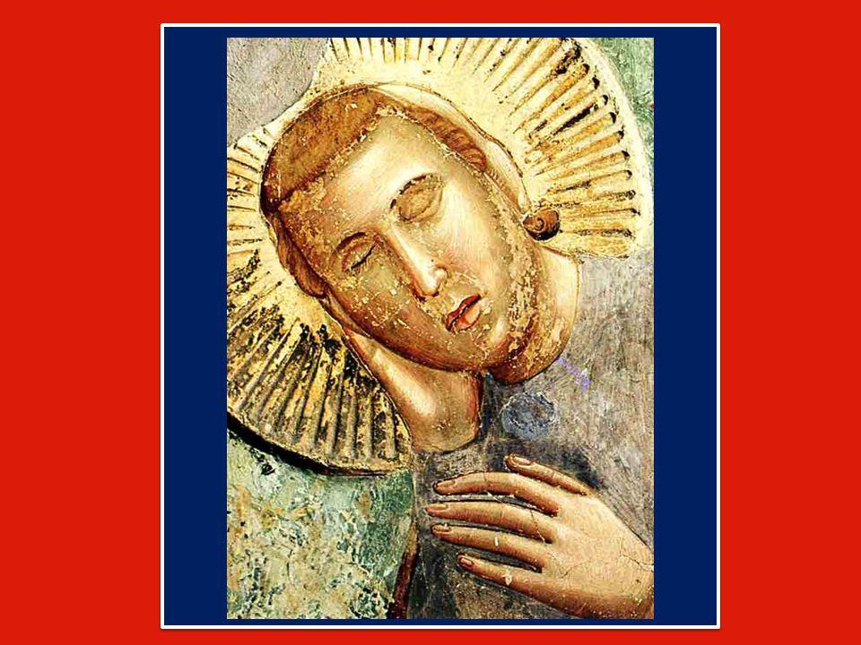 In quel contatto tra la mano di Gesù e il lebbroso viene abbattuta ogni barriera tra Dio e l'impurità umana, tra il Sacro e il suo opposto, non certo per negare il male e la sua forza negativa, ma per dimostrare che l'amore di Dio è più forte di ogni male, anche di quello più contagioso e orribile.