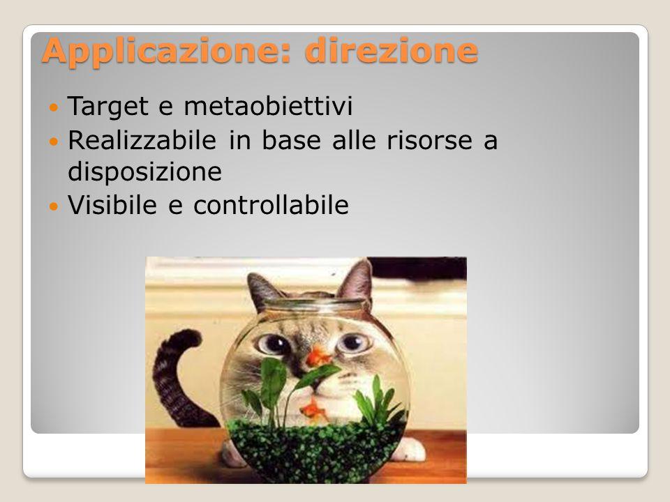 Applicazione: direzione Target e metaobiettivi Realizzabile in base alle risorse a disposizione Visibile e controllabile