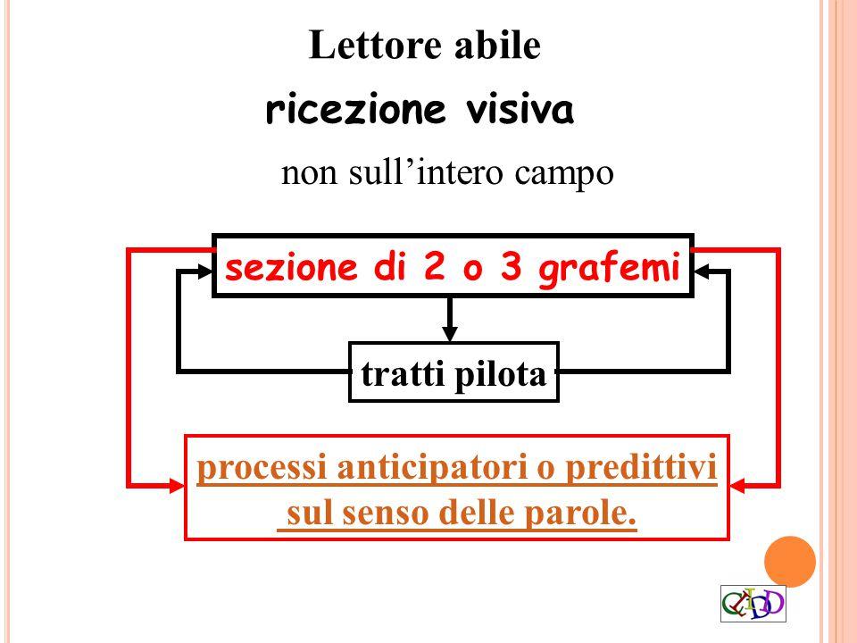 Lettore abile ricezione visiva non sull'intero campo processi anticipatori o predittivi sul senso delle parole. tratti pilota sezione di 2 o 3 grafemi