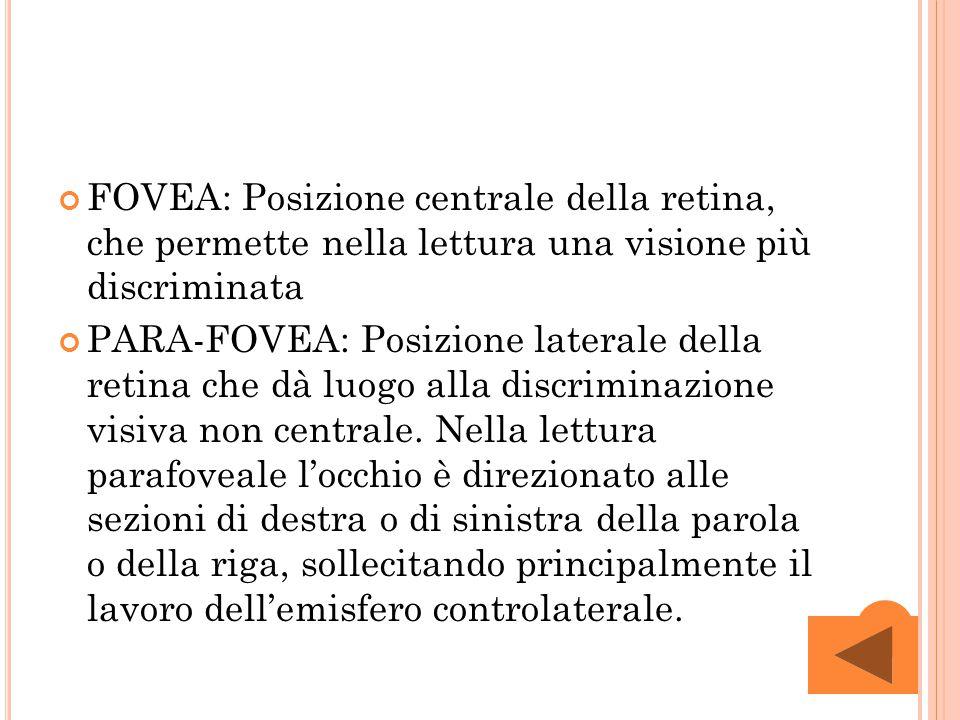 FOVEA: Posizione centrale della retina, che permette nella lettura una visione più discriminata PARA-FOVEA: Posizione laterale della retina che dà luo