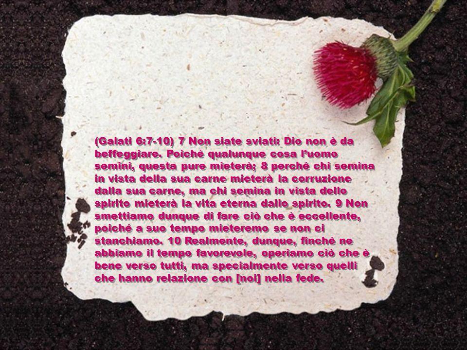(Galati 6:7-10) 7 Non siate sviati: Dio non è da beffeggiare. Poiché qualunque cosa l'uomo semini, questa pure mieterà; 8 perché chi semina in vista d
