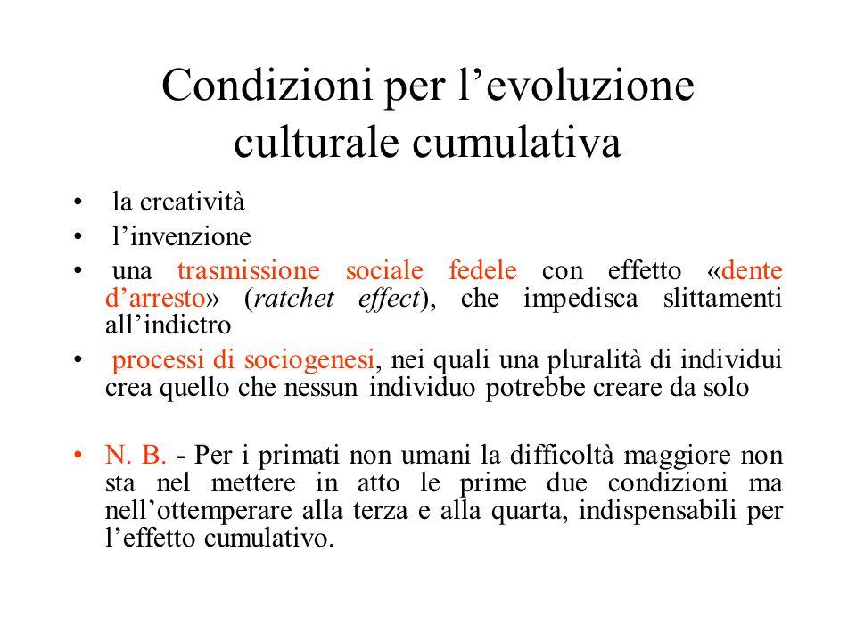 Condizioni per l'evoluzione culturale cumulativa la creatività l'invenzione una trasmissione sociale fedele con effetto «dente d'arresto» (ratchet effect), che impedisca slittamenti all'indietro processi di sociogenesi, nei quali una pluralità di individui crea quello che nessun individuo potrebbe creare da solo N.