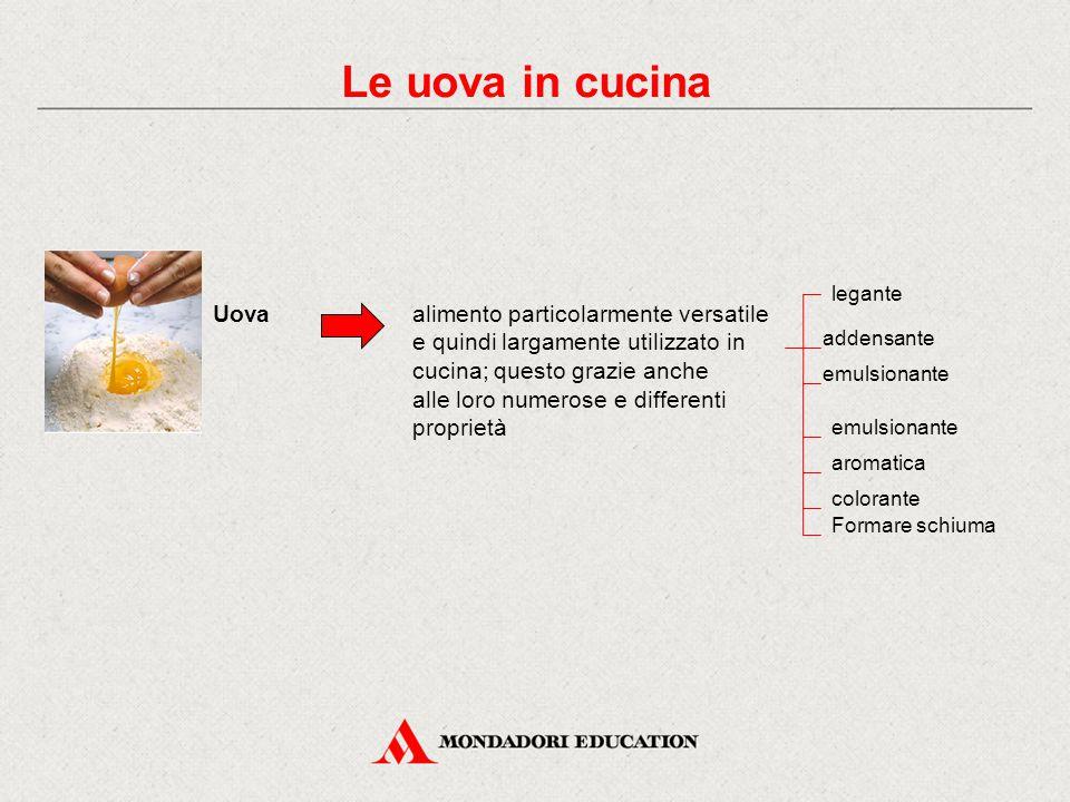 Le uova in cucina Uovaalimento particolarmente versatile e quindi largamente utilizzato in cucina; questo grazie anche alle loro numerose e differenti proprietà legante addensante emulsionante aromatica colorante Formare schiuma