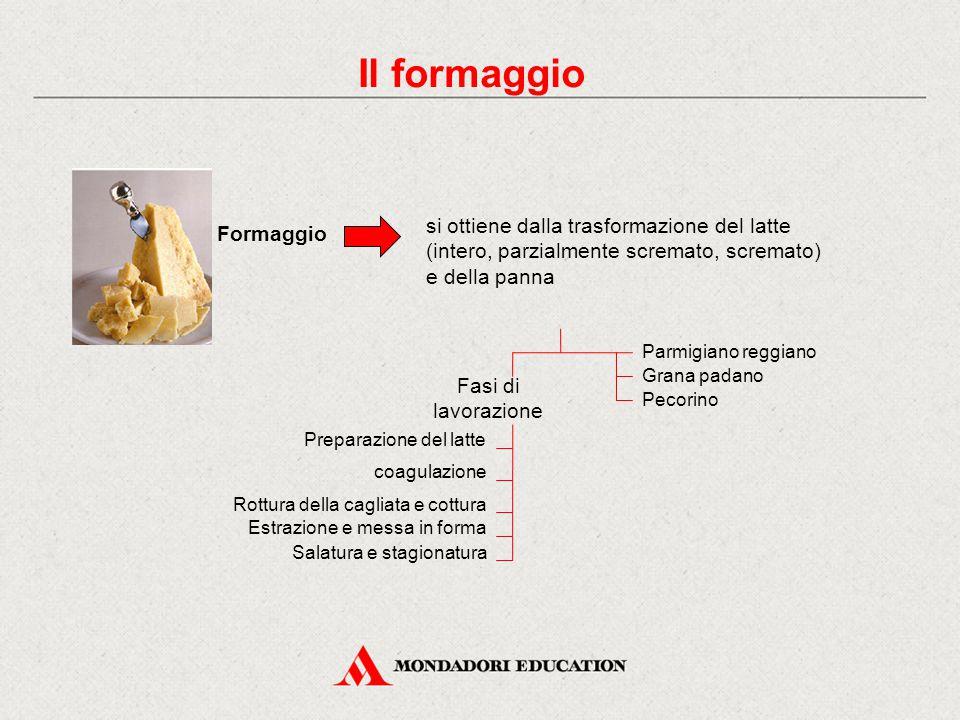 Il formaggio Formaggio si ottiene dalla trasformazione del latte (intero, parzialmente scremato, scremato) e della panna Fasi di lavorazione Preparazione del latte coagulazione Rottura della cagliata e cottura Estrazione e messa in forma Parmigiano reggiano Grana padano Pecorino Salatura e stagionatura