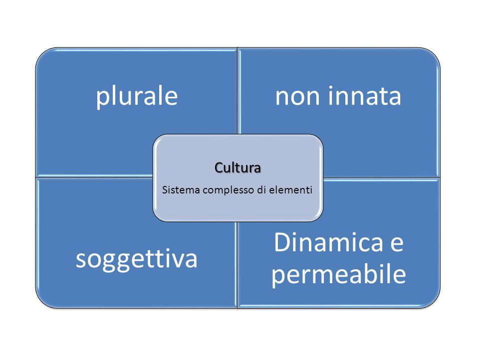 pluralenon innata soggettiva Dinamica e permeabile Cultura Sistema complesso di elementi