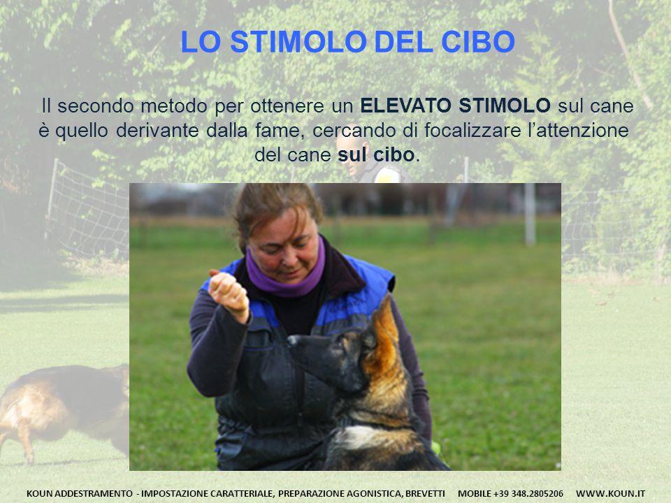 LO STIMOLO In genere capita che, dopo alcuni minuti il cane non abbia alcuna attenzione per il conduttore, e questi ci dica: ..OGGI NON HA VOGLIA NON MI GUARDA! .