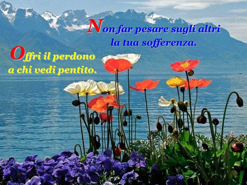 O ffri il perdono a chi vedi pentito. N on far pesare sugli altri la tua sofferenza.