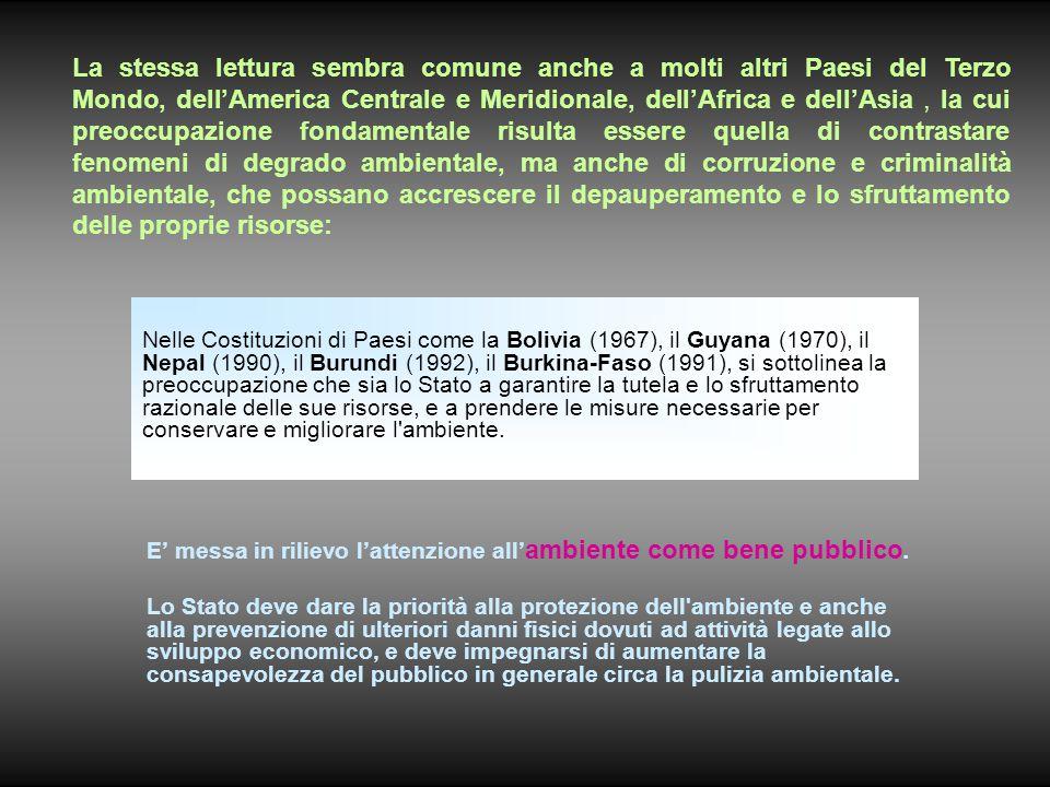 Nelle Costituzioni di Paesi come la Bolivia (1967), il Guyana (1970), il Nepal (1990), il Burundi (1992), il Burkina-Faso (1991), si sottolinea la preoccupazione che sia lo Stato a garantire la tutela e lo sfruttamento razionale delle sue risorse, e a prendere le misure necessarie per conservare e migliorare l ambiente.