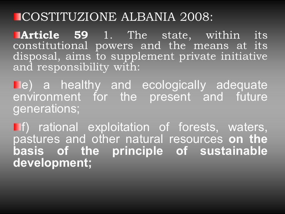Considerazioni Finali Il modello command and control riesce tuttora importante per la tutela dell'ambiente sia in ambito globale che nei singoli ordinamenti.