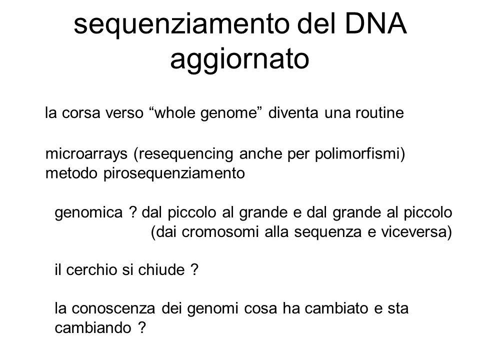 """sequenziamento del DNA aggiornato microarrays (resequencing anche per polimorfismi) metodo pirosequenziamento la corsa verso """"whole genome"""" diventa un"""