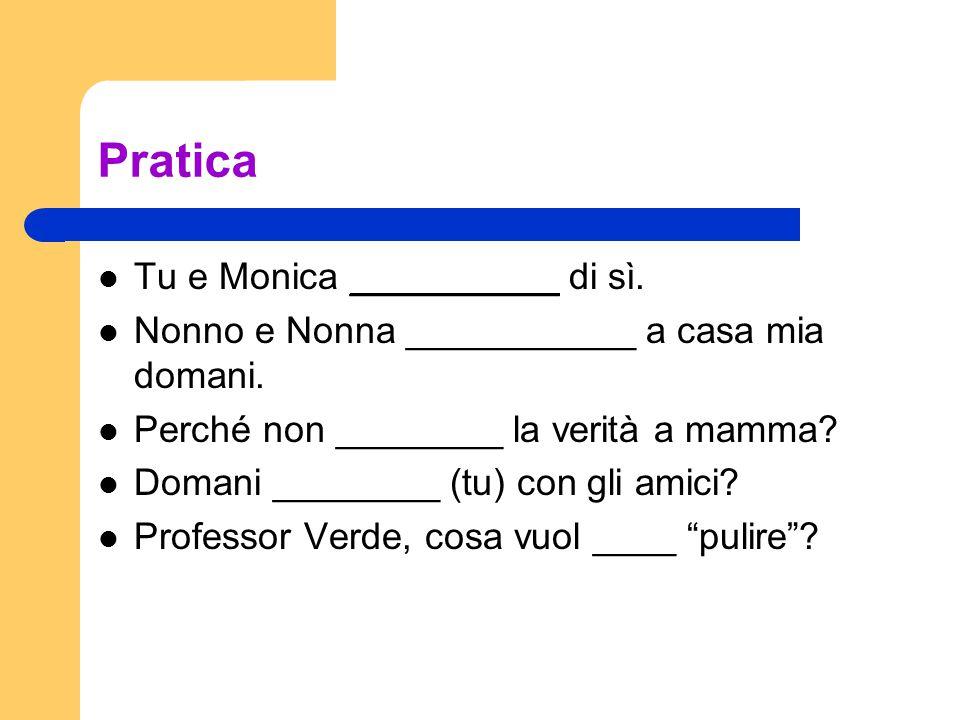 Pratica Tu e Monica __________ di sì. Nonno e Nonna ___________ a casa mia domani.