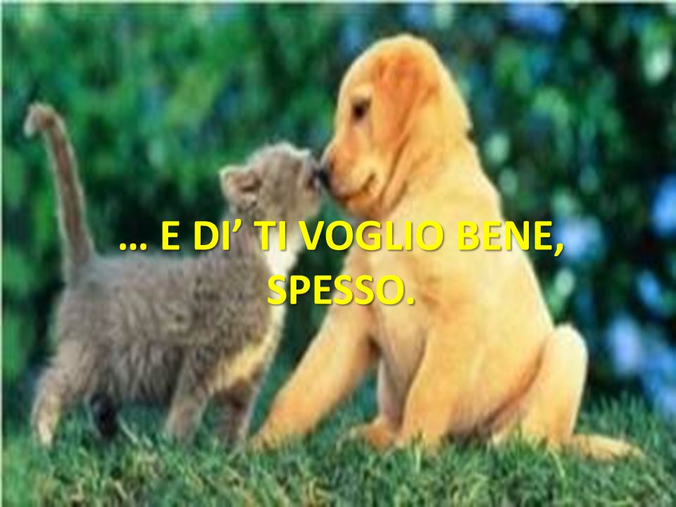 … E DI' TI VOGLIO BENE, SPESSO.