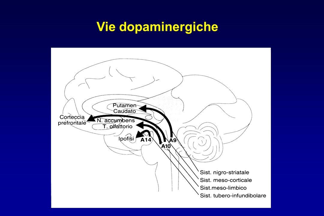 Effetti extrapiramidali Discinesia tardiva movimenti involontari abnormi, irregolari e ripetitivi, che coinvolgono i muscoli della facciale in particolare quelli della bocca, della lingua e della mandibola, con un quadro clinico definito sindrome bucco- linguo-masticatoria comparsa: dopo uno-due anni, spesso in seguito a sospensione della terapia patogenesi: ipersensibilità dei recettori dopaminergici postsinaptici nigro-striatali trattamento: clozapina