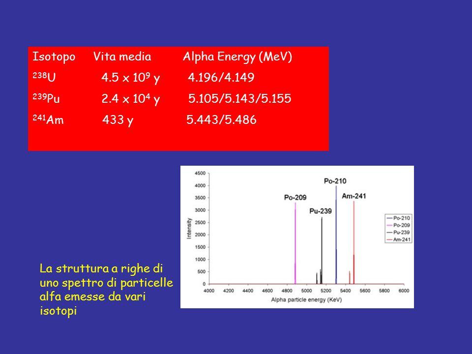 Isotopo Vita media Alpha Energy (MeV) 238 U 4.5 x 10 9 y 4.196/4.149 239 Pu 2.4 x 10 4 y 5.105/5.143/5.155 241 Am 433 y 5.443/5.486 La struttura a rig