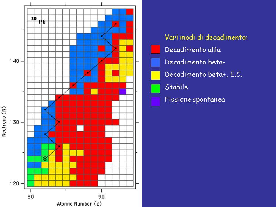Vari modi di decadimento: Decadimento alfa Decadimento beta- Decadimento beta+, E.C. Stabile Fissione spontanea