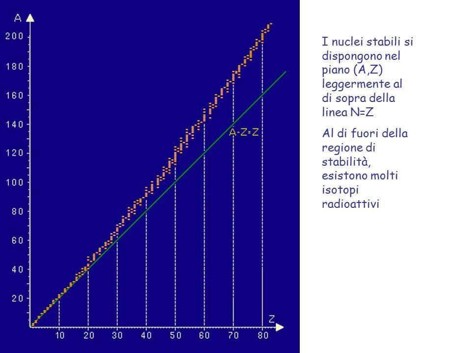 I nuclei stabili si dispongono nel piano (A,Z) leggermente al di sopra della linea N=Z Al di fuori della regione di stabilità, esistono molti isotopi